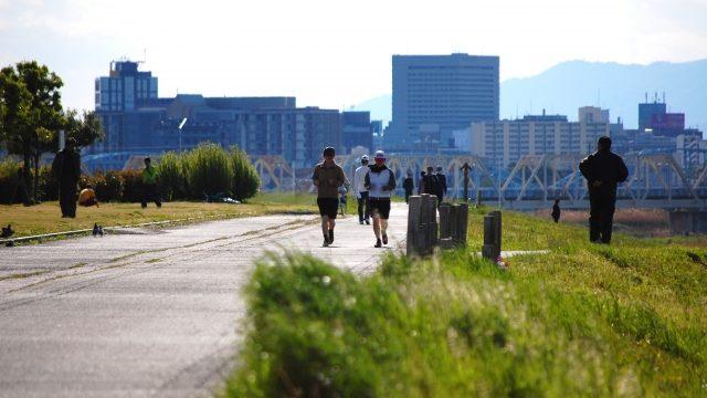 散歩コースの写真
