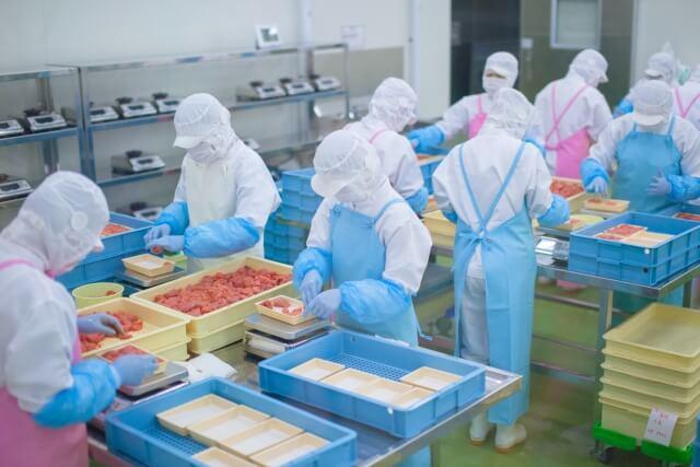 食品工場の作業風景